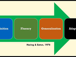 Generalisation & Adaptation