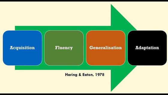 Generalisation & Adaptation