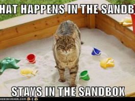 A CAT IN THE SANDBOX (SLOOM!- M is for multi-sensory)