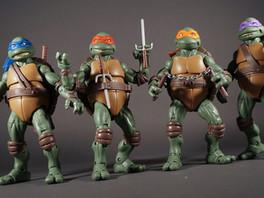 Distracted by Ninja Turtles