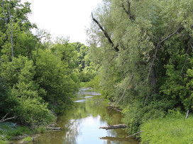 Oak Ridges Moraine Proposed Resolution in Support of Establishment of East Humber Headwaters Park