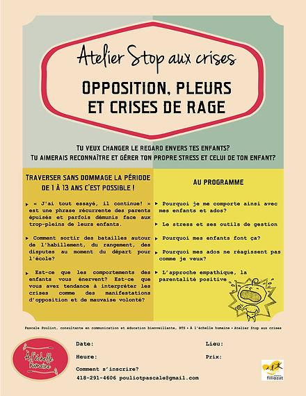 Stop aux crises, Pascale Pouliot, Travailleuse sociale, coach familiale, parentalité positive, éducation bienveillante, communication, gestion du stress, opposition, ateliers