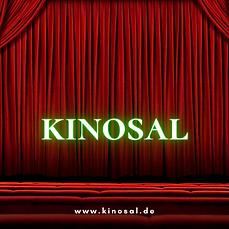 KiNosal (12).png