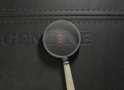 USPTO Launches Pilot Program to Combat Fake Specimens