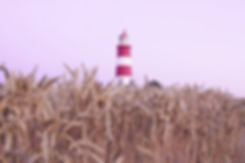 Happisburgh lighthouse - by Lesley van D