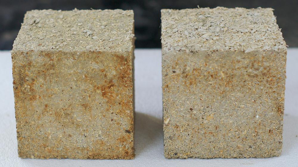 Hemp concrete cube specimens