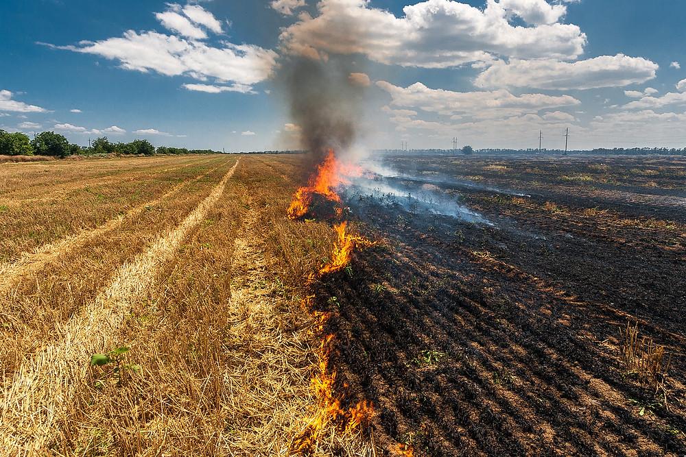 Crop Residues Burning