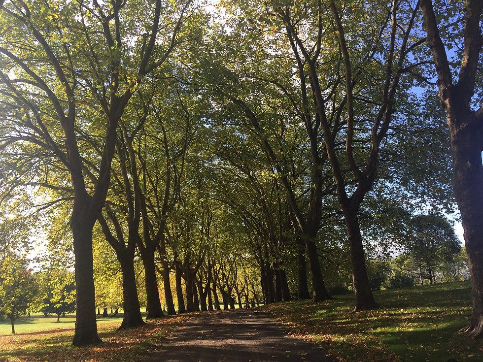 Gladstone park.JPG