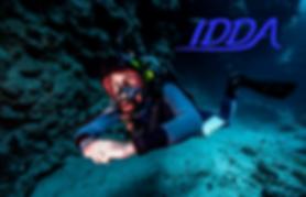 full_idda.png