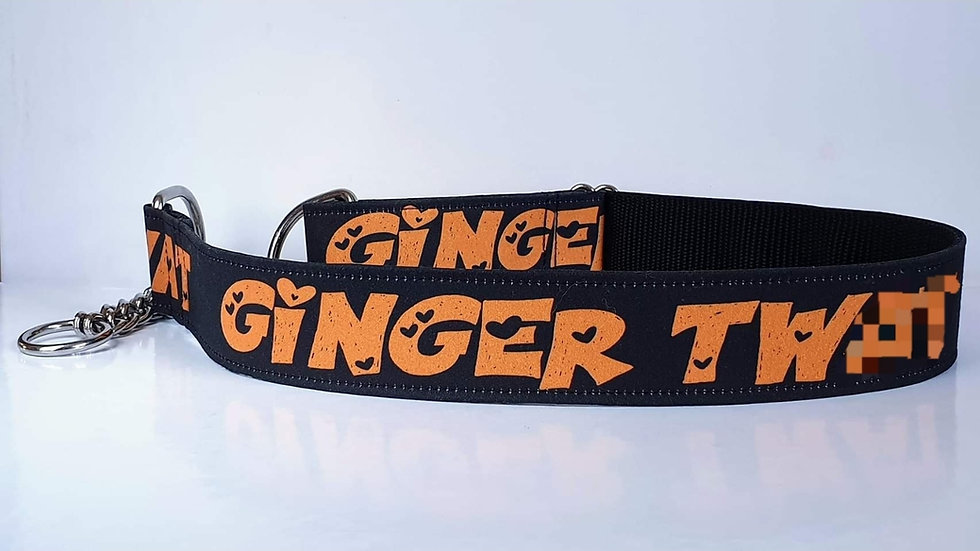 Custom or Offensive Half Check Dog Collars - DO NOT LOOK IF EASILY OFFENDED