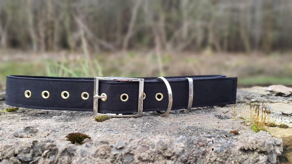 Strong Buckle Ultimate Collar