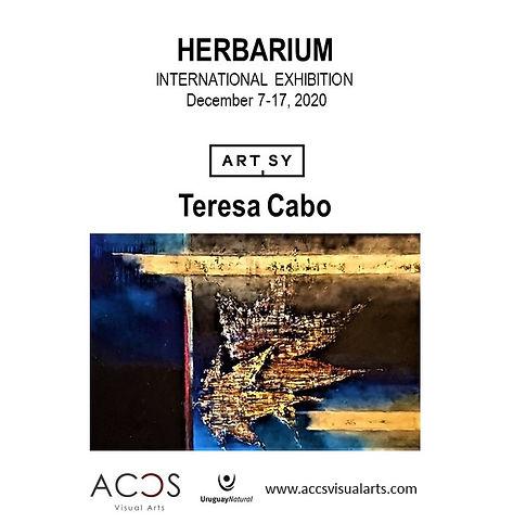 Herbarium by Teresa Cabo