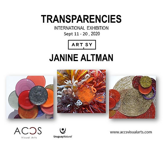TRANSPARENCIES by Janine Altman