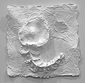 White Botanical 2