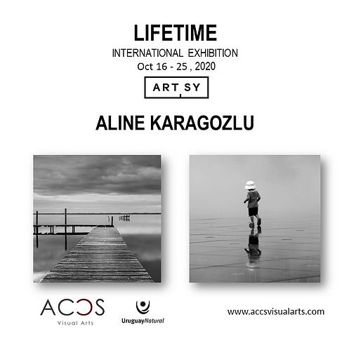 LIFETIME by Aline Karagozlu
