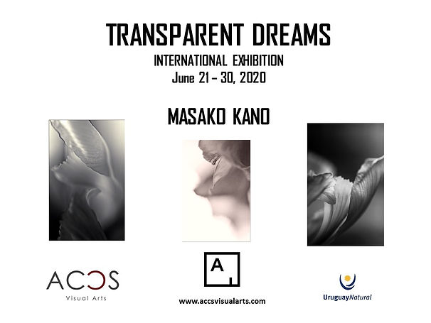 TRANSPARENT DREAMS by Masako kano