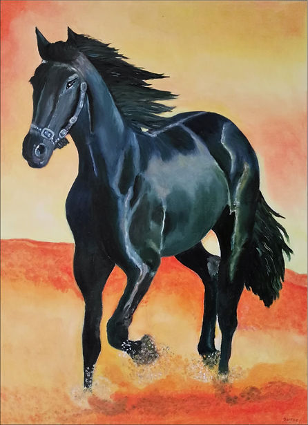 caballo negro.jpg