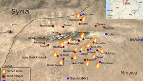 Yazda Documentation of the Wildfires Currently in Sinjar and Recommendations to the authorities