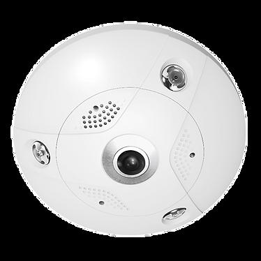 Fisheye ip camera