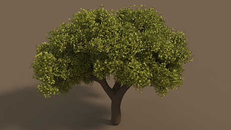 treetest_wip_SD_v1.png