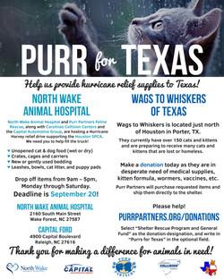 Purr for Texas
