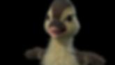 DLN_fur_v6_closeup_SD.png