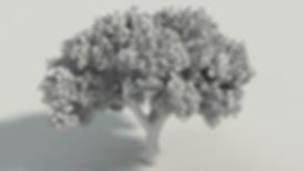 treetest_gray_SD_v1.png