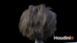 02_nia_hairback1_SD.png