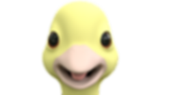 duckeyetest_SD_v3.png