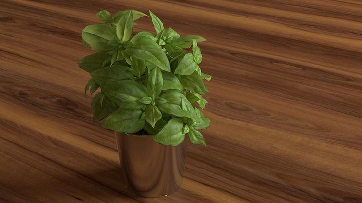 leafrender1.jpg