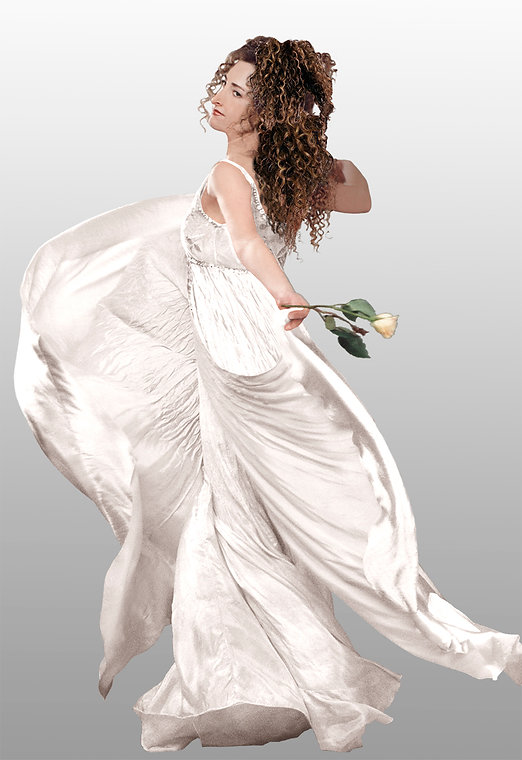 Beautiful wedding gown.jpg