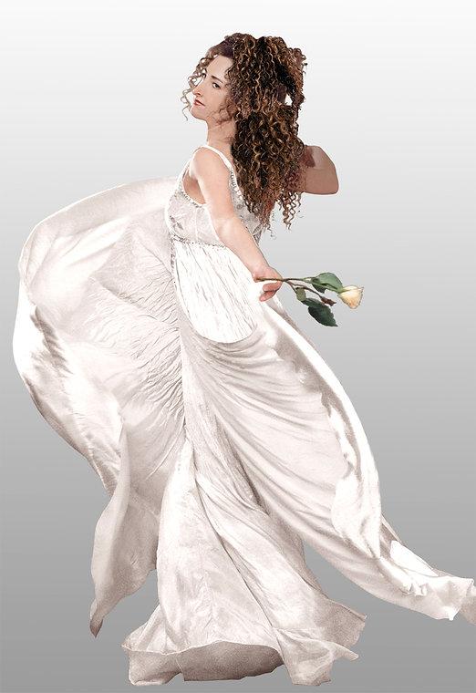 Beautiful wedding gown.jpg