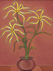 Spider Flowers, 1908