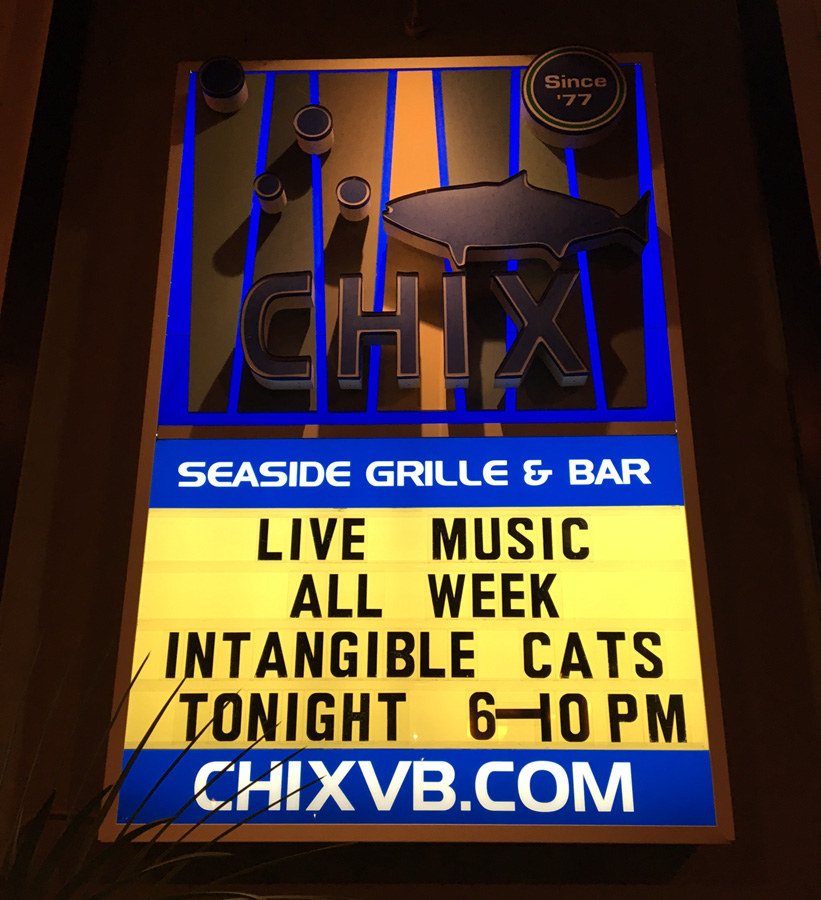 The Intangible Cats play Seaside