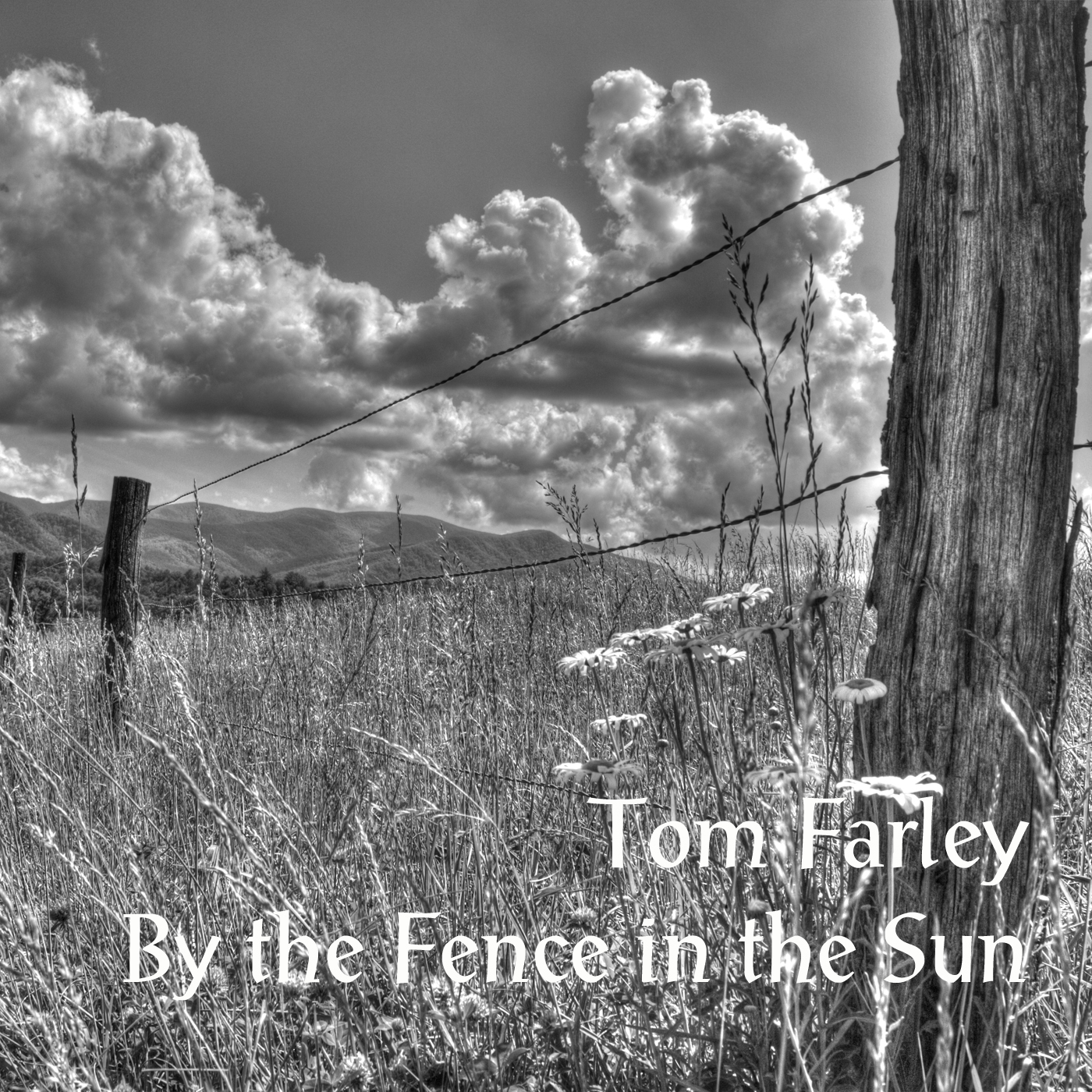 """By the Fence in the Sun"" CD"