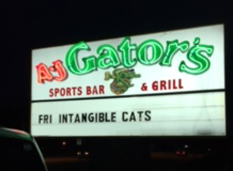 The Cats at A.J. Gators