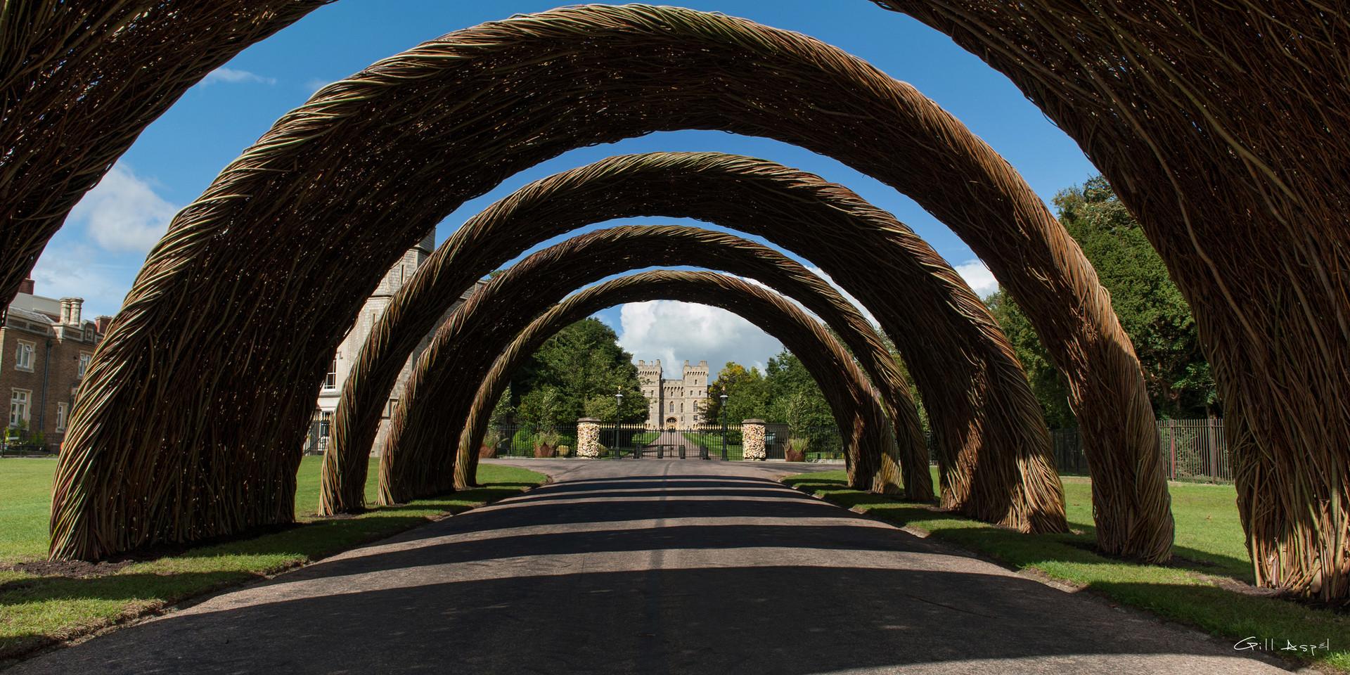 arch monday-3ag ws.jpg