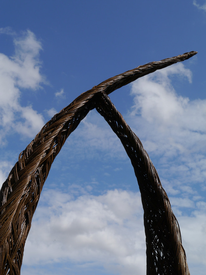 curve_top.willowsculpturalseat_spencerje