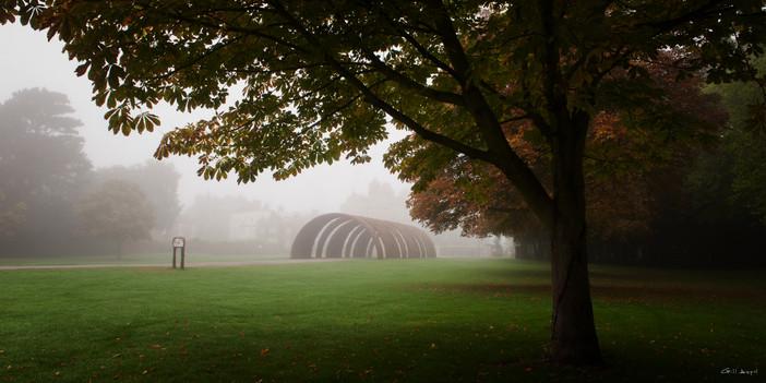 autumn a.jpg