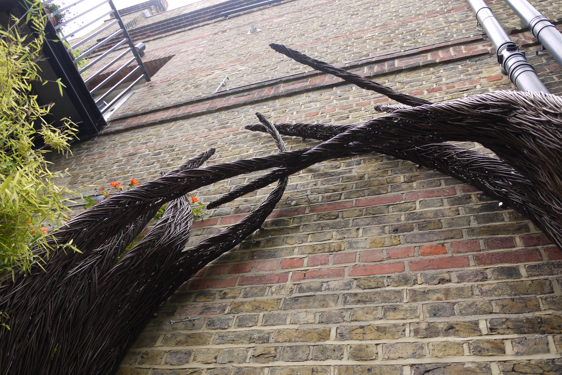 roofgarden.structure_leafL1_spencerjenki
