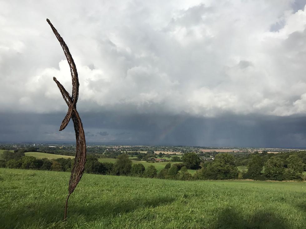 spencerjenkins_leaf.bird_willowsculpture