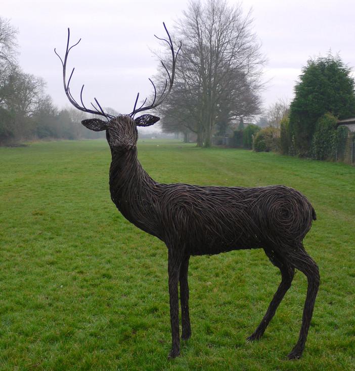 stag.willowsculpture.spencerjenkins.jpg