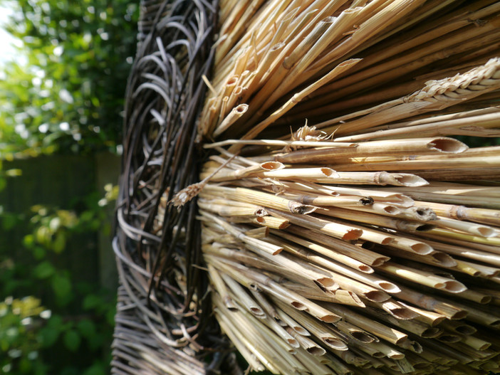 wild_jordan's.willostraw.sculpture_spenc