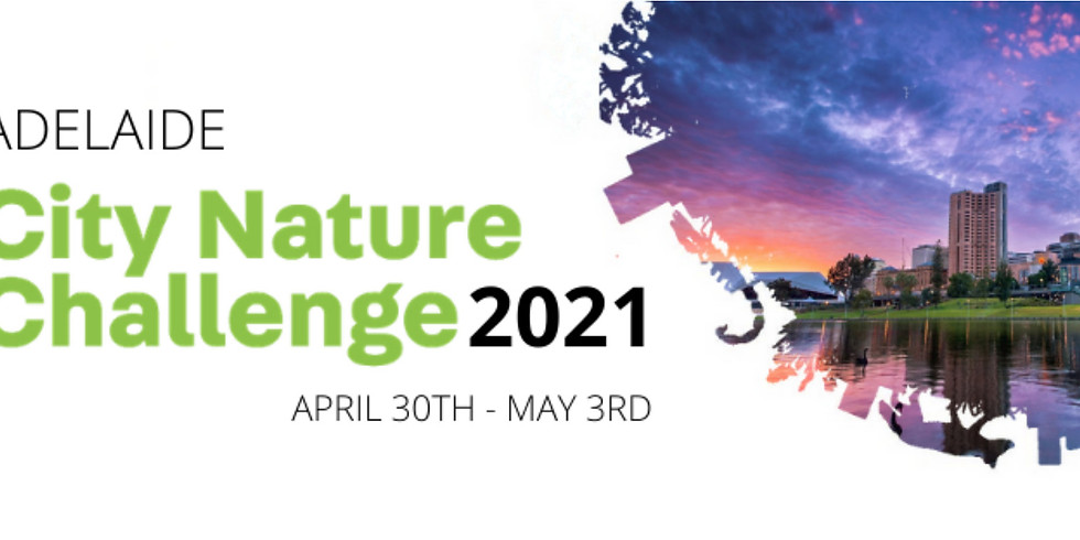 City Nature Challenge: Greater Adelaide