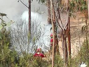 O Comandante Carlos Walcher da BUSF- Portugal com mais 500 bombeiros tentam controlar fogo em Abrant
