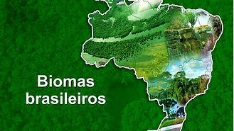 Biomasbrasileiros4ºano.jpg