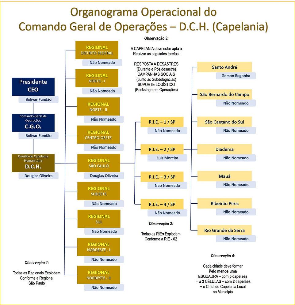Organo-3.jpg
