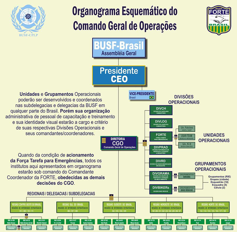Organograma CGO-2021-menor2.jpg