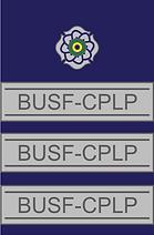 E - Oficiais Intermediários