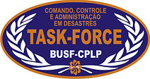 TASK-FORCE 2.jpg